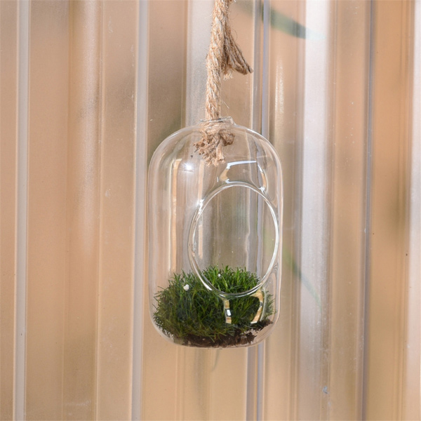 Sole Hanging Glass Terrarium, Small