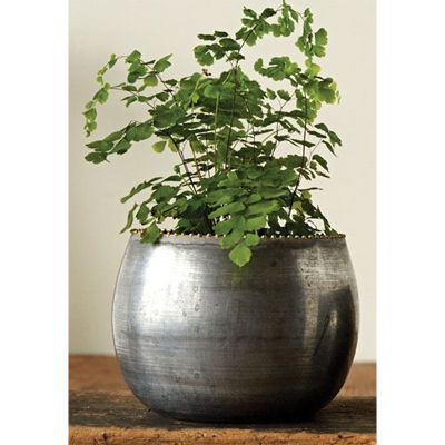 Round Metal Pot, 6in