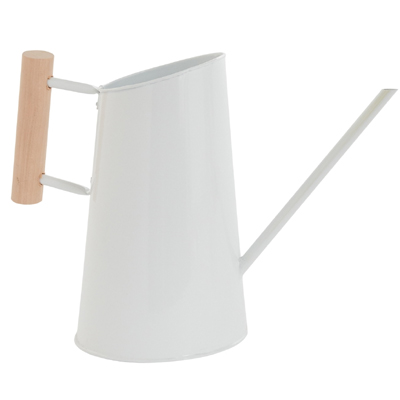 Preston Watering Can, Large